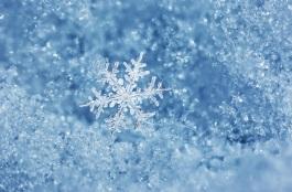 snowflakeboheh